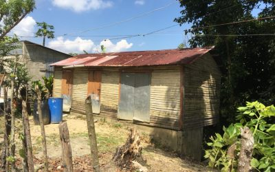 Renovierung von Gebäuden